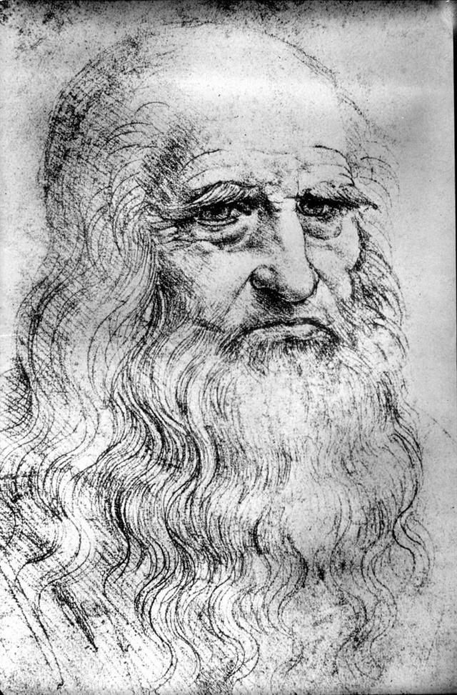 Leonardo Da Vinci 40396 2 Raw