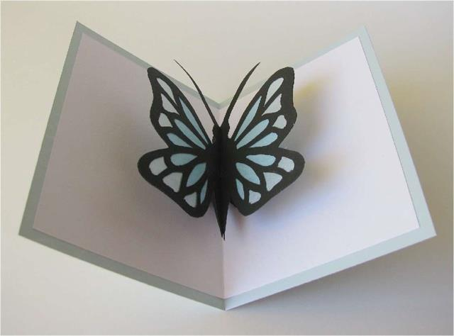 Farfalla Bicolore Pop Up